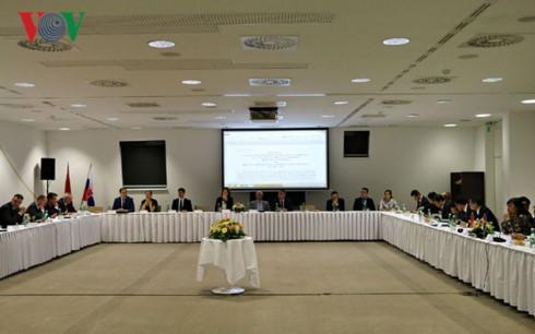 Активизация экономического сотрудничества между Вьетнамом и Словакией - ảnh 1