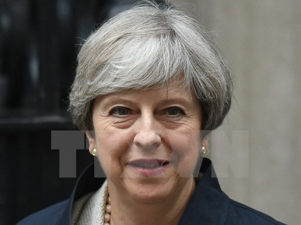 Британский премьер Тереза Мэй призвала поддержку со стороны оппозиционных партий - ảnh 1