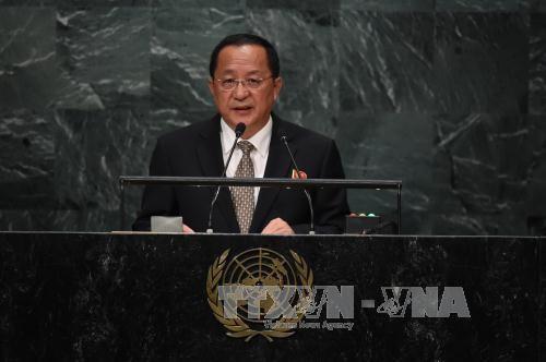 Ли Ёнхо: КНДР является ответственным ядерным государством - ảnh 1