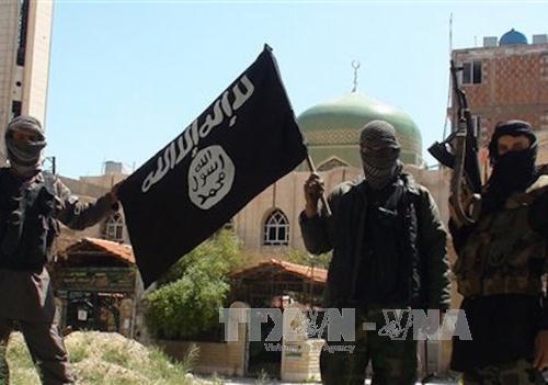 """""""伊斯兰国""""宣布:比利时恐怖事件制造者也是法国袭击事件的凶手 - ảnh 1"""
