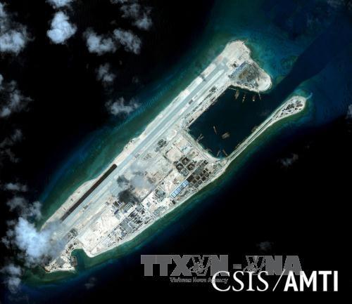 中国在东海非法建设人工岛严重威胁生态环境 - ảnh 1