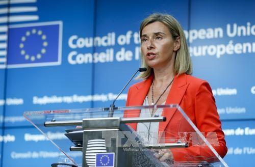欧盟延长对俄制裁 - ảnh 1