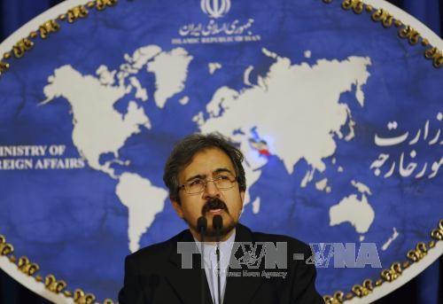 伊朗呼吁建立叙利亚停火协议监督机制 - ảnh 1