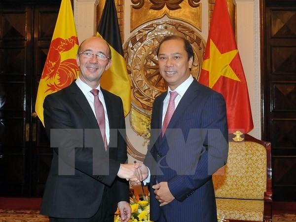 促进有效落实越南与比利时瓦隆-布鲁塞尔联邦2016至2018年阶段合作计划 - ảnh 1