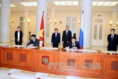 越南和俄罗斯政府间合作委员会第19次会议在俄举行 - ảnh 1