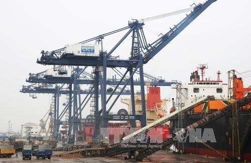 广宁省盖麟港新年第一天吞吐量达近20万吨 - ảnh 1