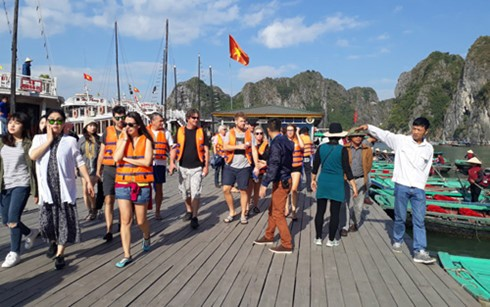 新年期间游览下龙湾的游客超过2.6万 - ảnh 1