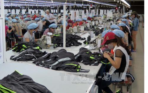 越南经济有望快速增长 - ảnh 1