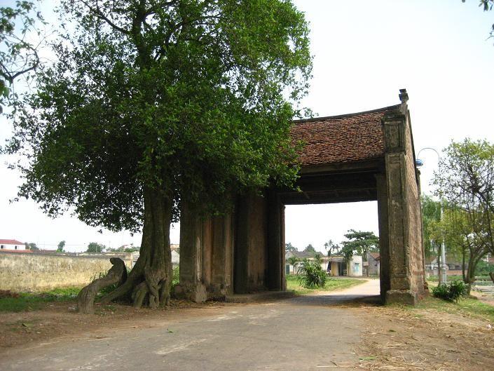 越南乡村及其面貌的构成因素 - ảnh 2