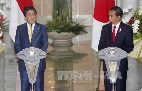 日本和印度尼西亚加强海上安全合作 - ảnh 1