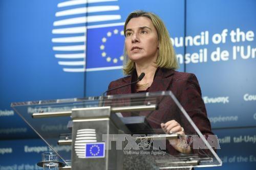欧盟重申支持与伊朗达成的核协议 - ảnh 1