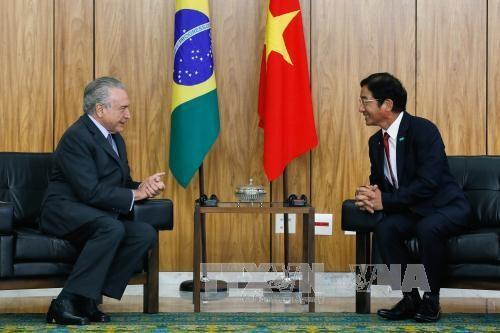 巴西希望加强与越南的合作 - ảnh 1