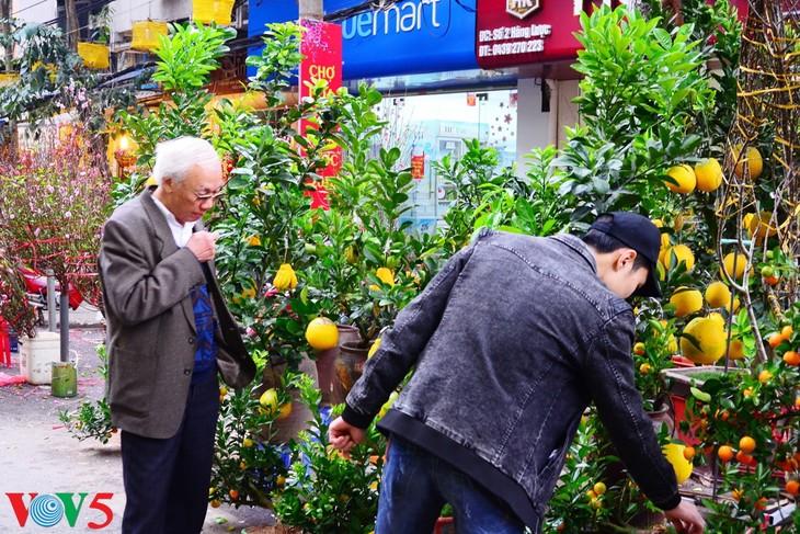 河内古街的迎春气氛 - ảnh 11