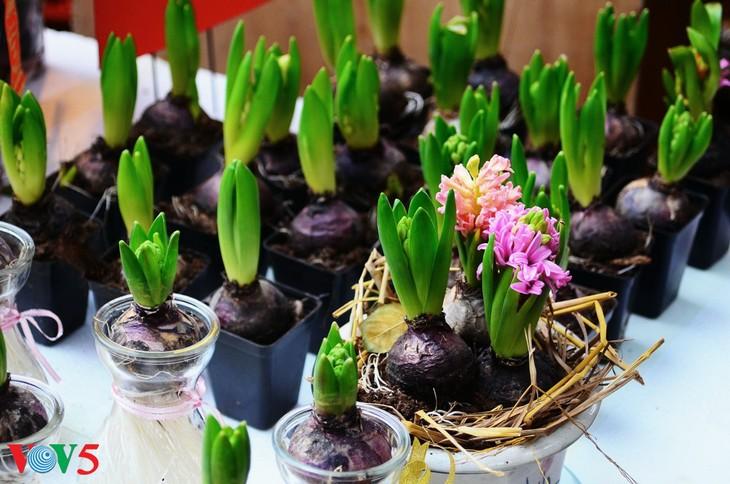 河内古街的迎春气氛 - ảnh 9