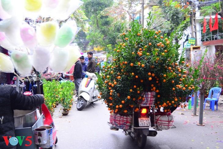 河内古街的迎春气氛 - ảnh 8
