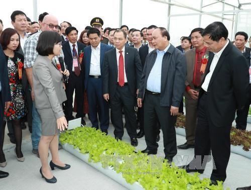 阮春福:直接向国际市场推介越南农产品 - ảnh 1