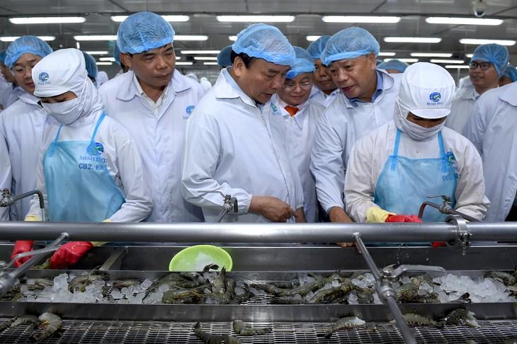 阮春福:2025年越南虾出口力争达100亿美元 - ảnh 2