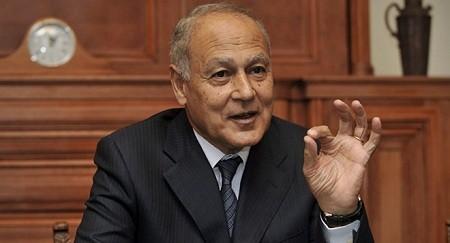 阿拉伯联盟支持中东和平进程的两国方案 - ảnh 1