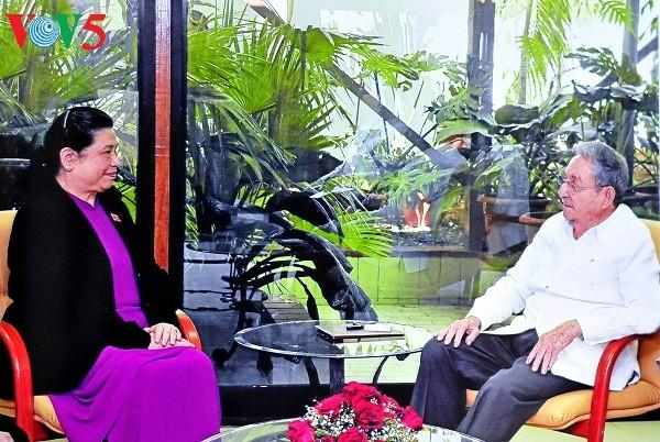 越南国会副主席丛氏放圆满结束访古行程 - ảnh 1