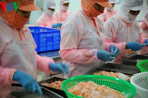 越南力争2017年实现水产出口75亿美元 - ảnh 1