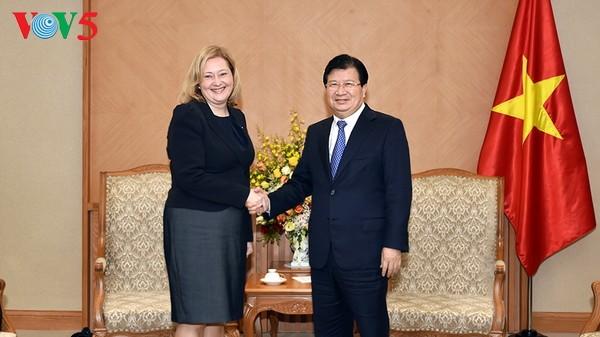 越南政府副总理郑庭勇会见俄罗斯和爱尔兰驻越大使 - ảnh 2