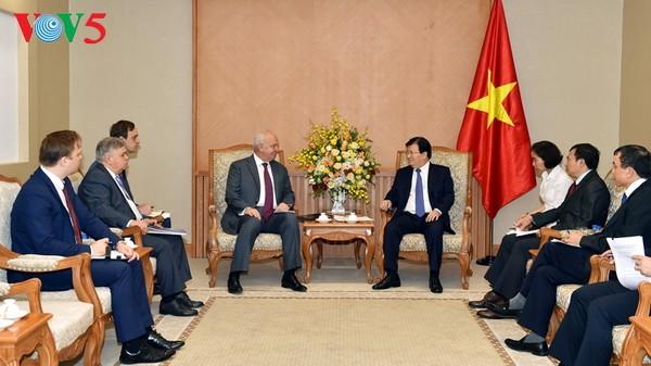 越南政府副总理郑庭勇会见俄罗斯和爱尔兰驻越大使 - ảnh 1