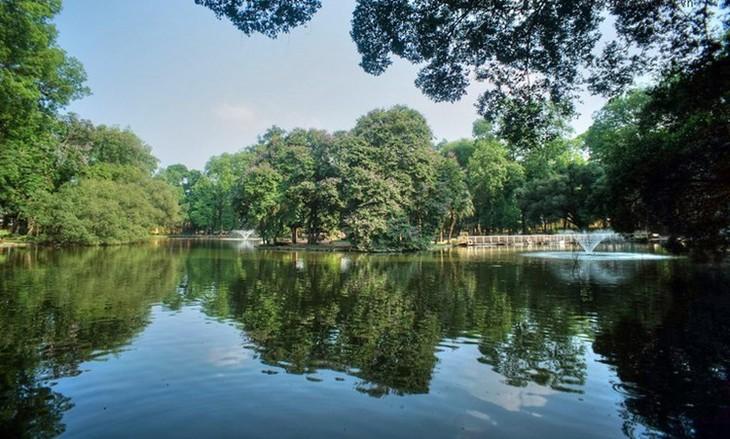 河内的绿肺——百草公园 - ảnh 1