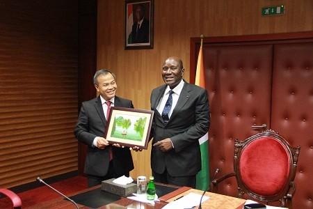 越南外交部副部长武鸿南访问科特迪瓦并出席越科外交部政治磋商 - ảnh 1