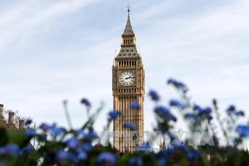英国经济出现更多积极增长迹象 - ảnh 1