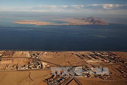 埃及批准向沙特归还两座岛屿的协议 - ảnh 1