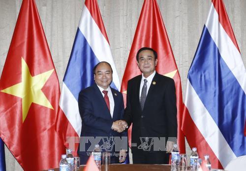 推动越泰两国战略伙伴关系日益深入有效和可持续发展 - ảnh 1