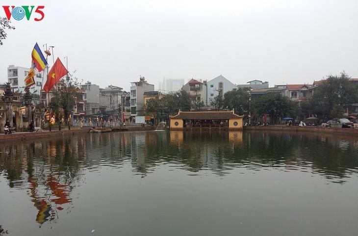 朝曲村面向成为河内盆景中心 - ảnh 2