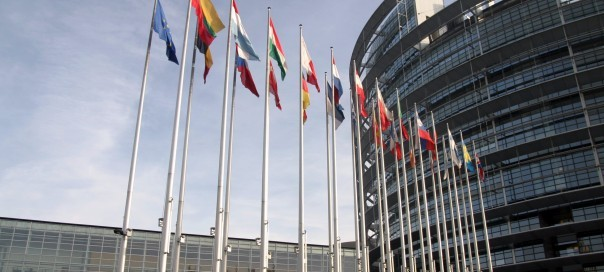 21 countries unanimously vote in European parliamentary elections  - ảnh 1