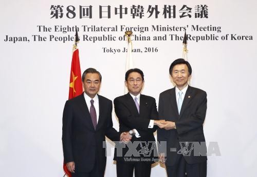Japan, China, South Korea discuss ways to maintain trilateral cooperation - ảnh 1