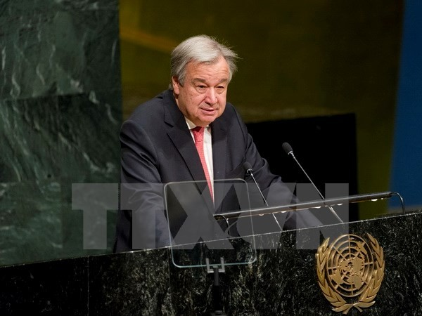 UN Secretary General condemns Israel's new settlement plan  - ảnh 1