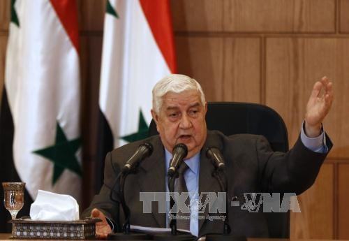 Syrian government denies alleged use of chemical weapons - ảnh 1
