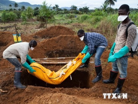 Ngăn chặn dịch Ebola: nhiệm vụ không dễ dàng - ảnh 1