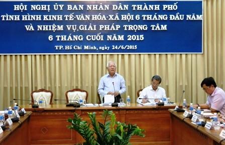 Kinh tế xã hội thành phố Hồ Chí Minh 6 tháng năm 2015: Phục hồi và tăng trưởng khá - ảnh 1