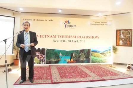 Thúc đẩy quảng bá du lịch Việt Nam tại Ấn Độ - ảnh 1