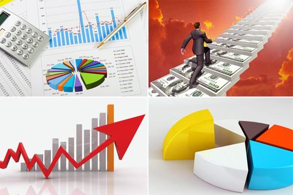 Cải thiện môi trường kinh doanh để doanh nghiệp phát triển - ảnh 1
