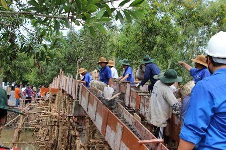 Nhiều hoạt động tình nguyện thiết thực vì đất nước - ảnh 3