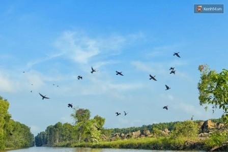 Nhịp sống Đồng Tháp Mười mùa nước nổi - ảnh 3