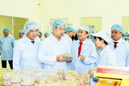 Phát triển bền vững ngành yến sào ở Việt Nam - ảnh 2