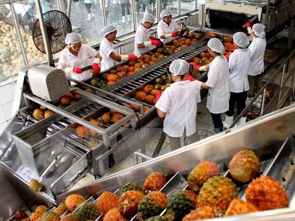 Kinh tế xã hội Việt Nam  khởi sắc trong 6 tháng đầu năm 2017 - ảnh 2
