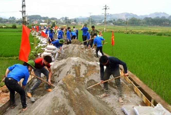 Tuổi trẻ Việt Nam với Mùa hè tình nguyện - ảnh 2