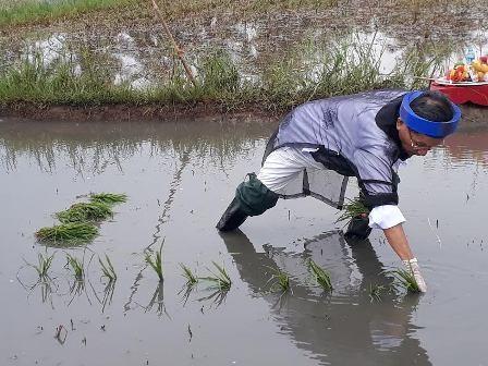 Đặc sắc lễ hội xuống đồng của người dân thị xã Quảng Yên, tỉnh Quảng Ninh - ảnh 5
