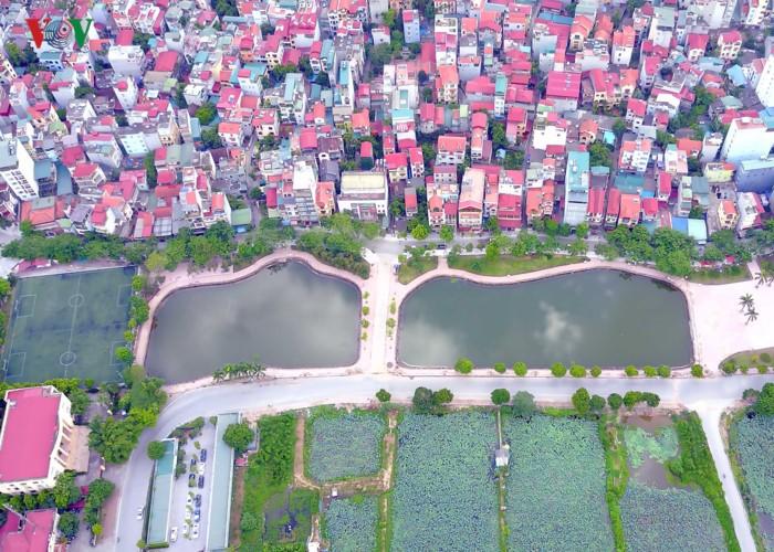 Tuyến phố đi bộ Trịnh Công Sơn - ảnh 3