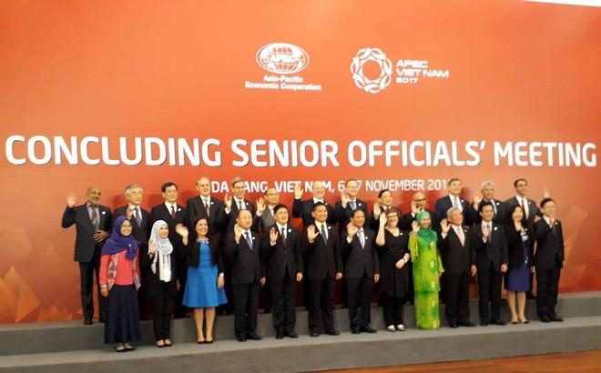 Khai mạc Hội nghị Các quan chức cấp cao APEC (CSOM) - ảnh 2