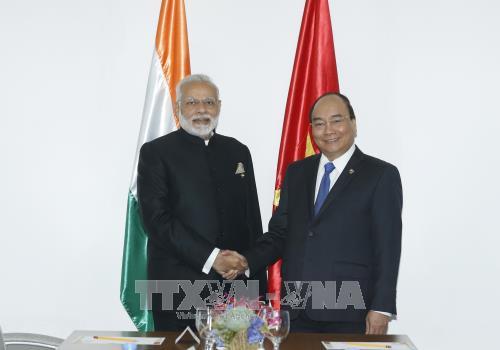 Việt Nam và Ấn Độ thúc đẩy hợp tác song phương - ảnh 1