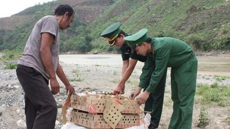 จังหวัดชายแดนภาคเหนือเวียดนามต้องเป็นฝ่ายรุกเพื่อรับมือกับโรคไข้หวัดนก - ảnh 1